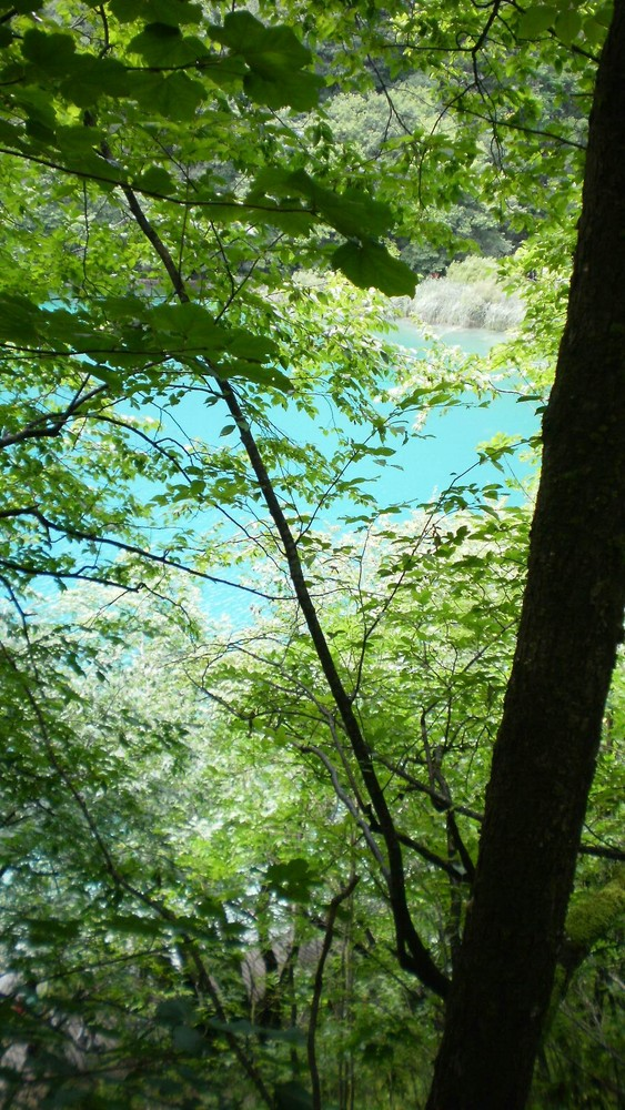 Plitvicer Seen *traumhaft*