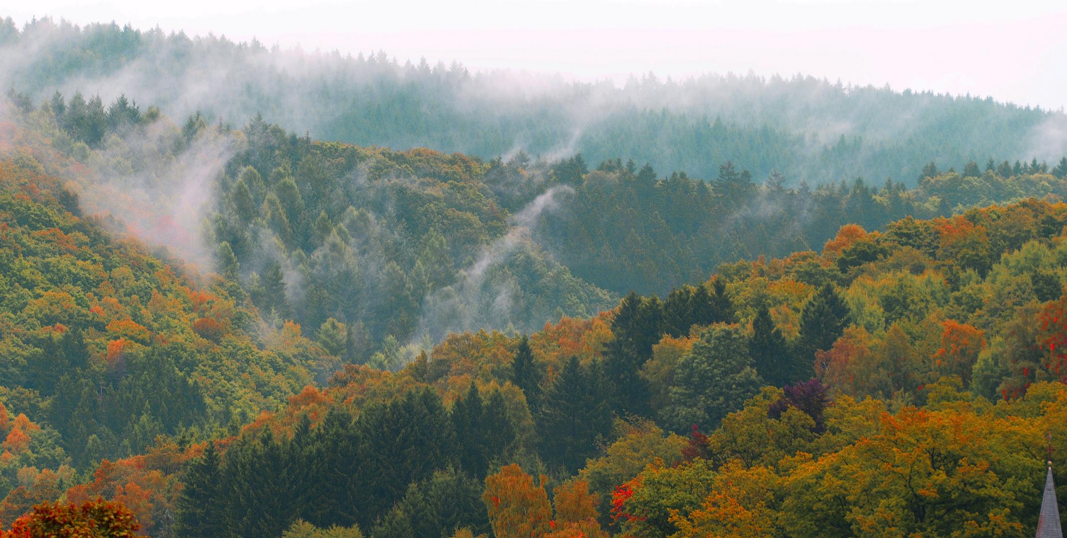 plötzlich Herbst, ...