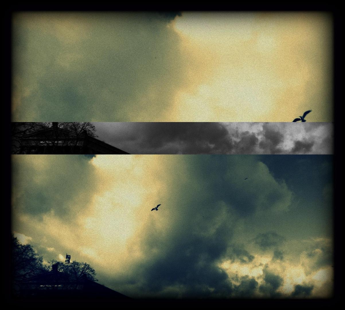 Plötzlich wieder Kind, frei wie der Wind, fliegt Vögel, fliegt, geschwind!