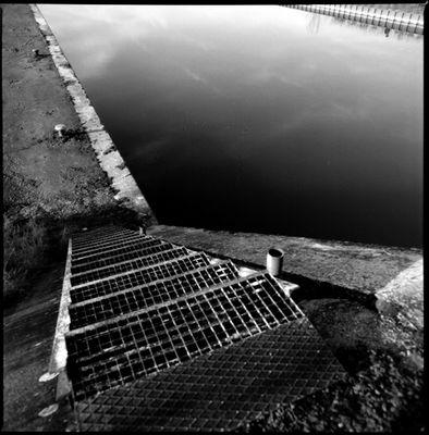 plongeon • 2008