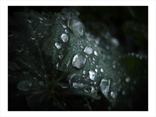pluie acide