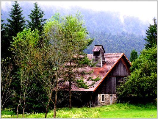 Pluie dans le Haut-Doubs