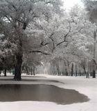 Pluie et la neige