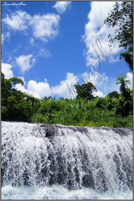 plus grande cascade de l'ile Trinité Bellevue  [Martinique 972]