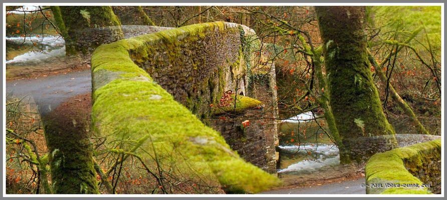 Plym River Bridge