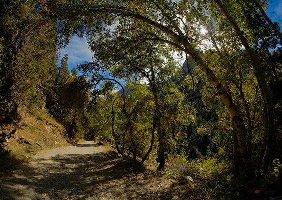 PN Aiguestortes y Estany de Sant Maurici - Samyang 8mm f2,8 - 1