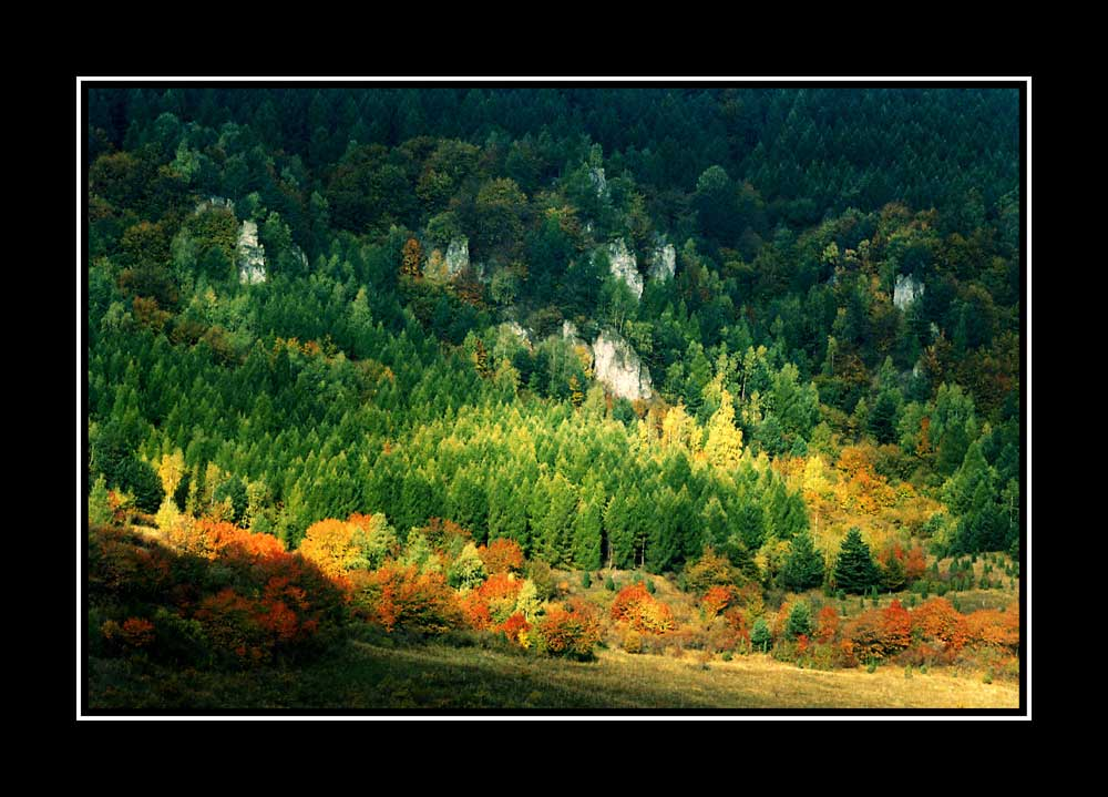 Podskaly in Autumn - near the little village Lacnov (Eastern Slovakia)
