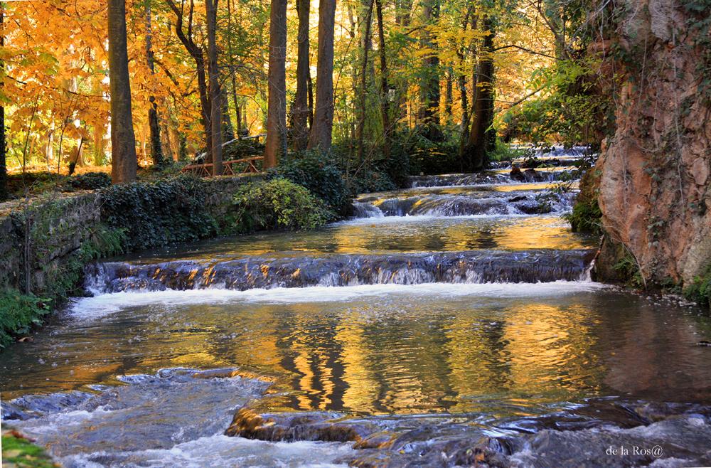 Poema al rio