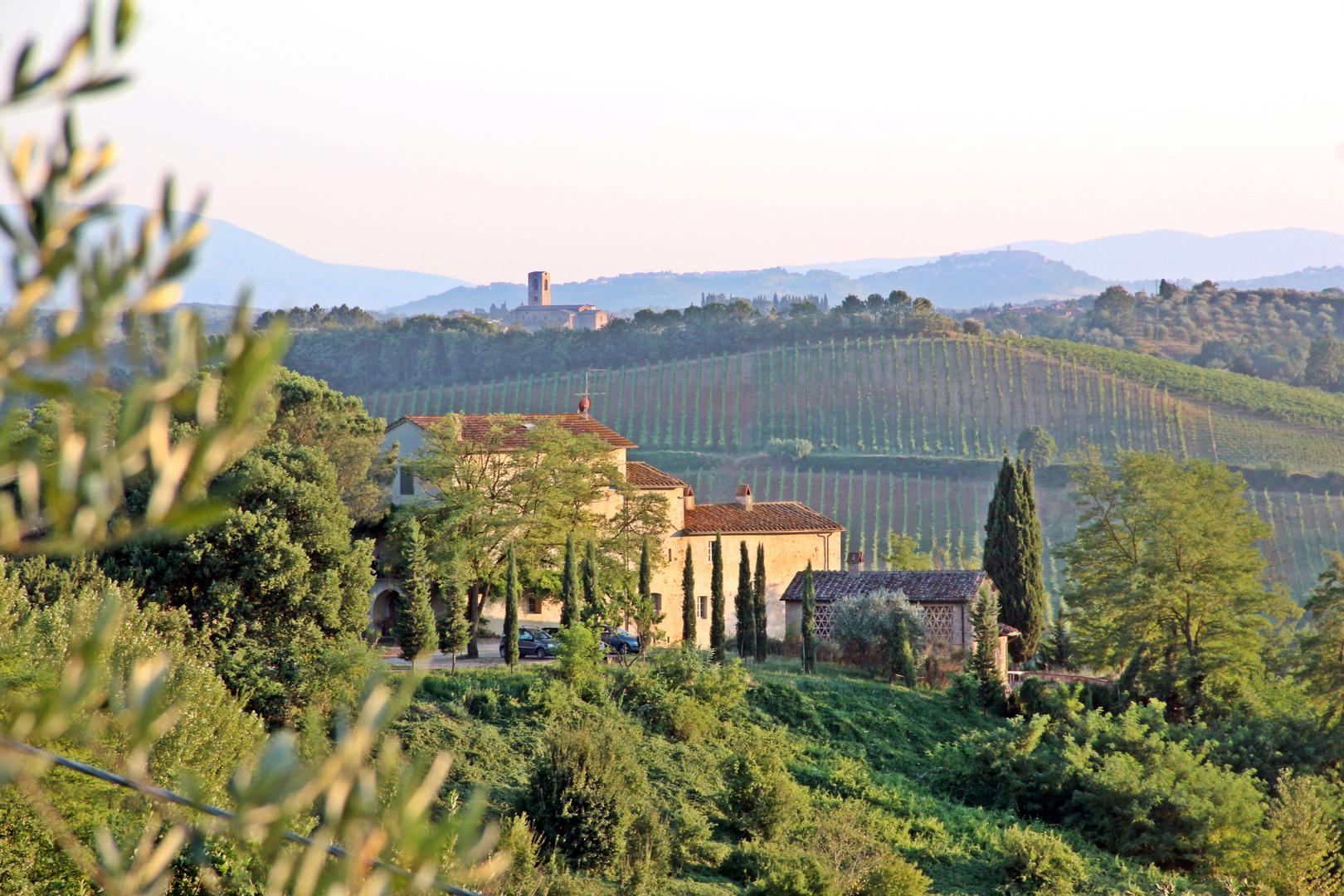 Poggio al Leccio - das Heim von Marco Magni in der Nähe von Poggibonsi