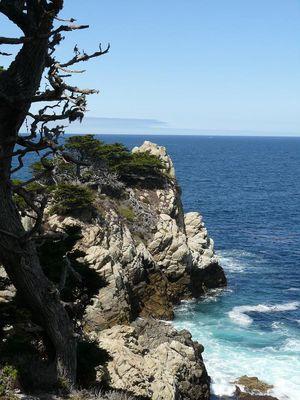 Point Lobos im September