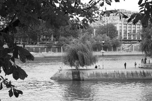 Pointe de l'île de la cité un dimanche après-midi