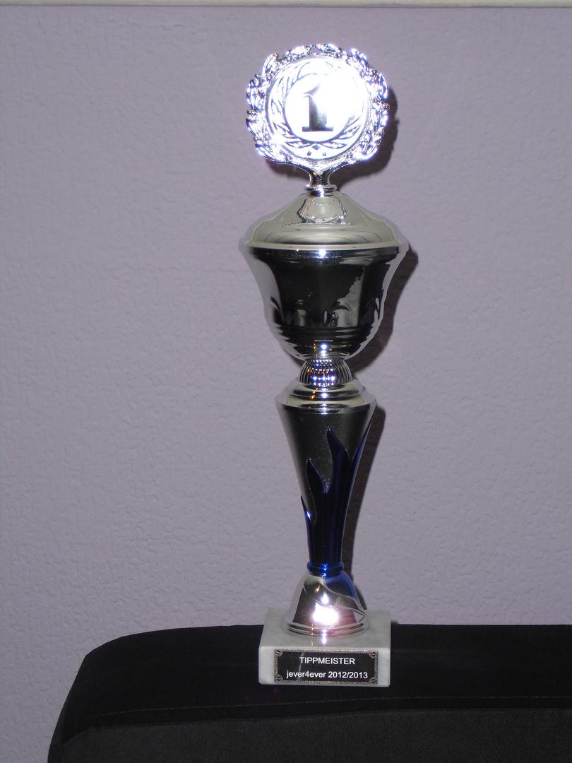 Pokal 2012/2013