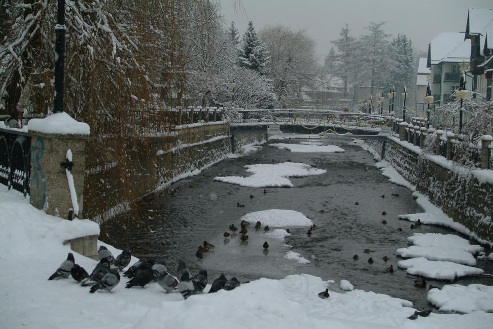 Polanica-Zdroj (Altheide) in dem winterlichen Gewand