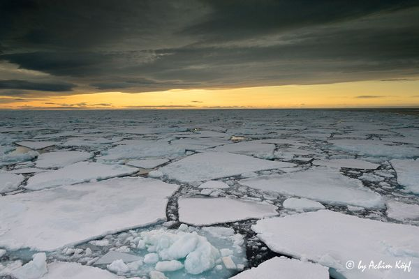 Polar Quest #2
