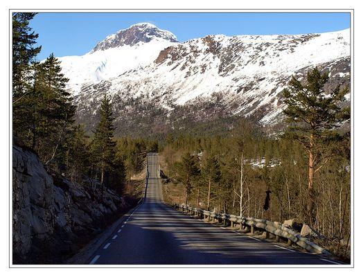 Polarkreis/Saltfjell (11 )