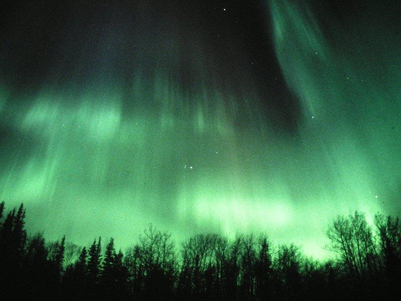 Polarlicht auf dem Parks-Highway