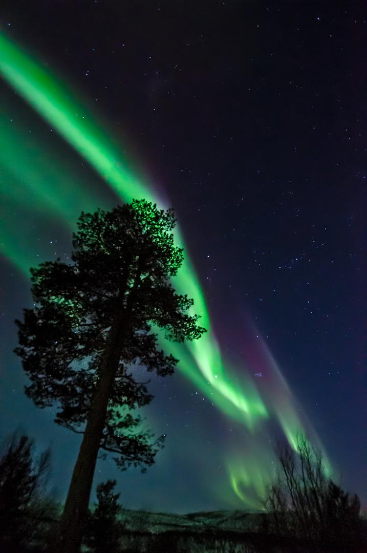 Polarlicht III