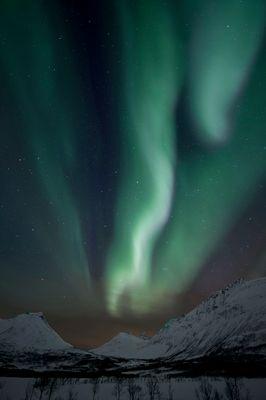 Polarlicht über Troms / Norwegen 4
