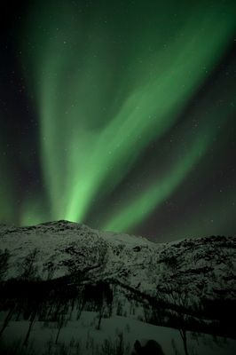Polarlicht über Troms / Norwegen 5