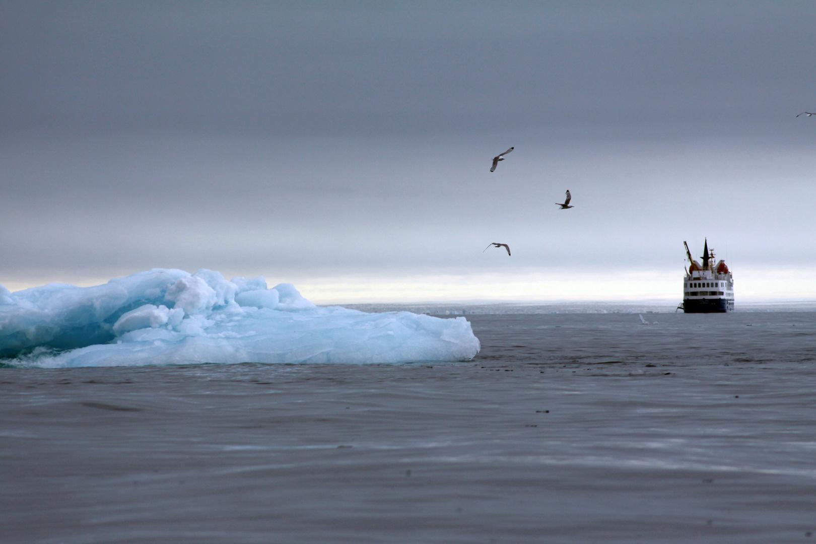Polarnacht im Arktischen Sommer