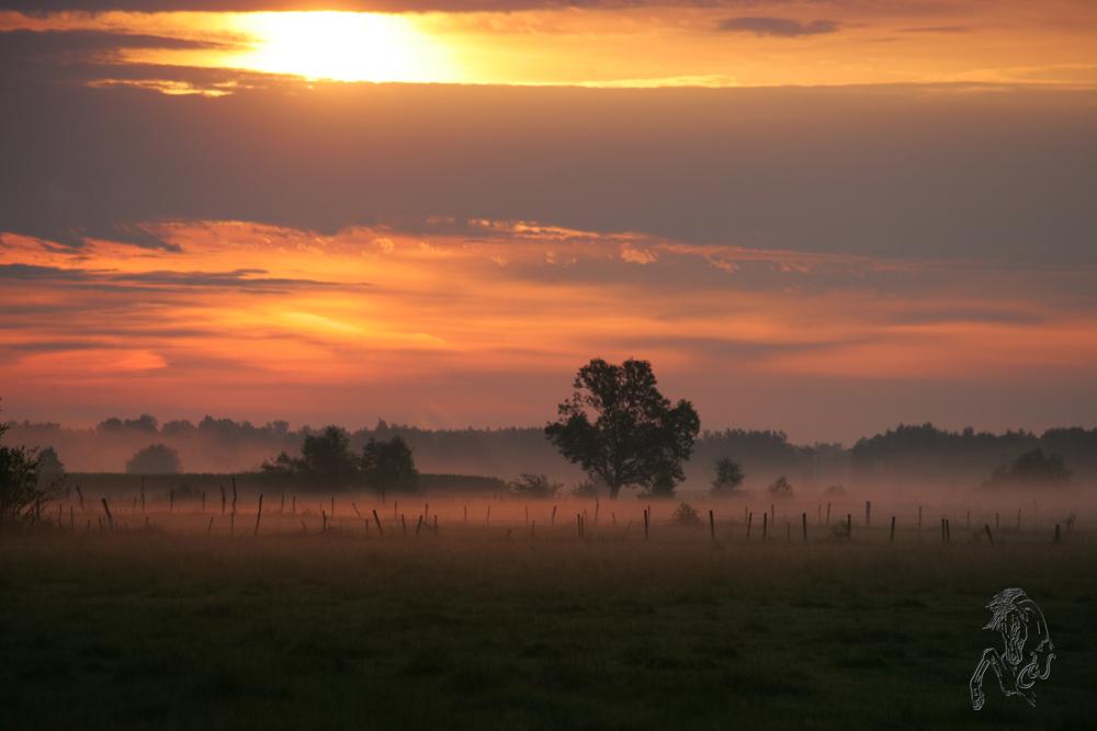 Polen ganz früh am Morgen :-D