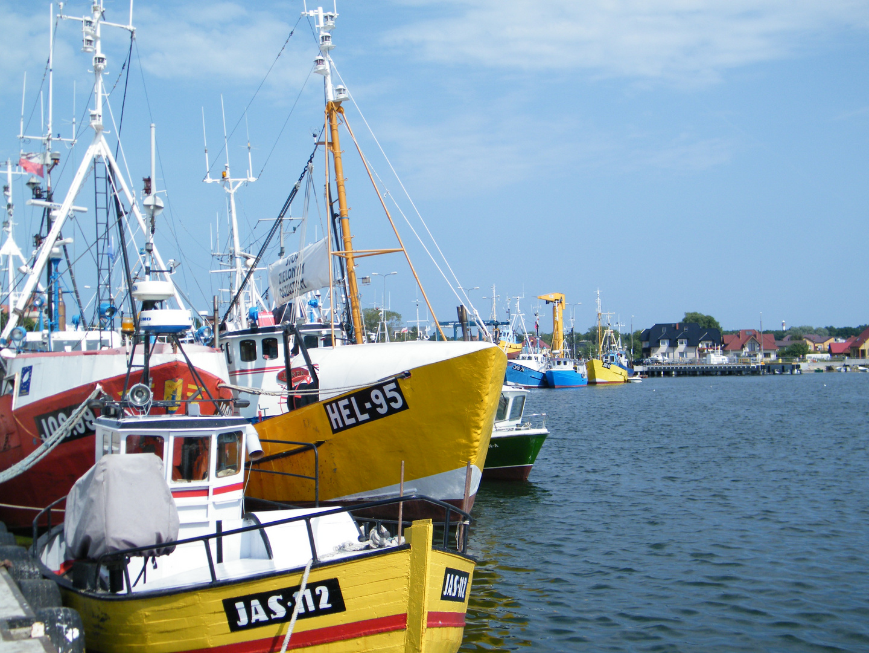 Polen Hafen Jastarnia