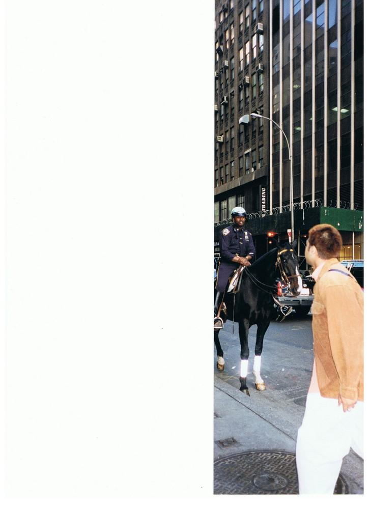 POLICE MONTEE NEW YORK