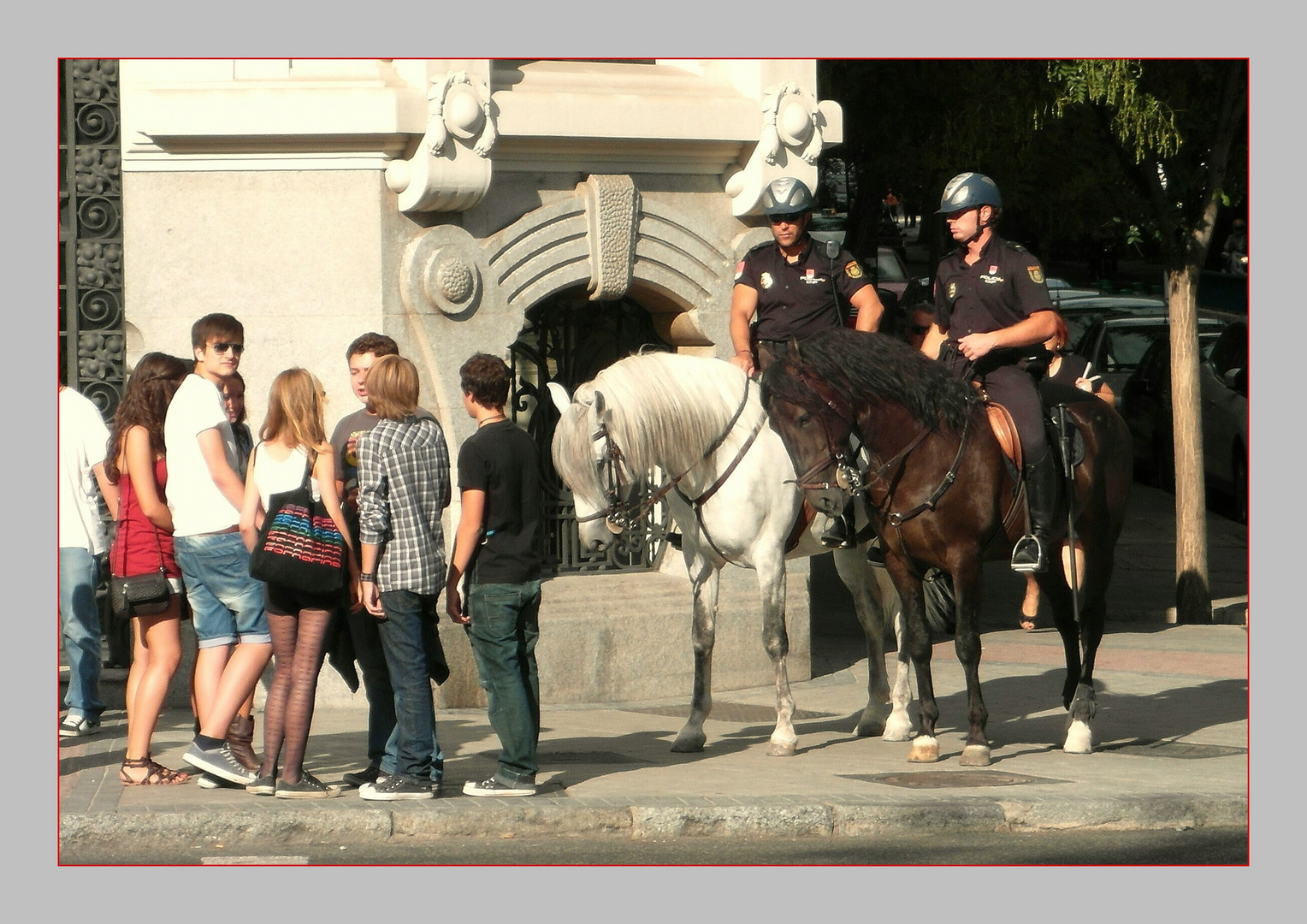 - Policia Montada -