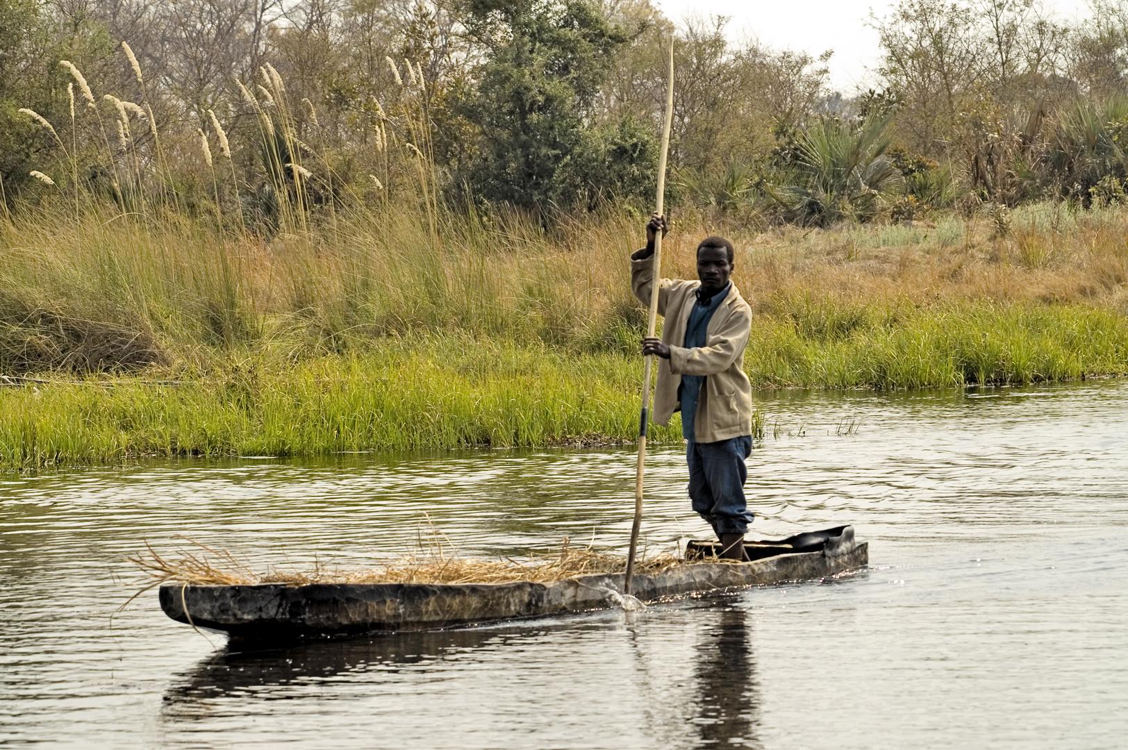 Poller mit Mokoro im Okawango-Delta