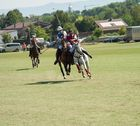 Polo Emotions Cup Stuttgart No.3