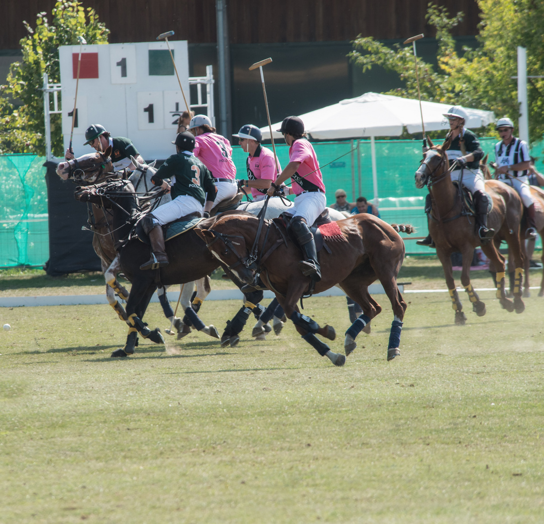 Polo Emotions Cup Stuttgart No.4
