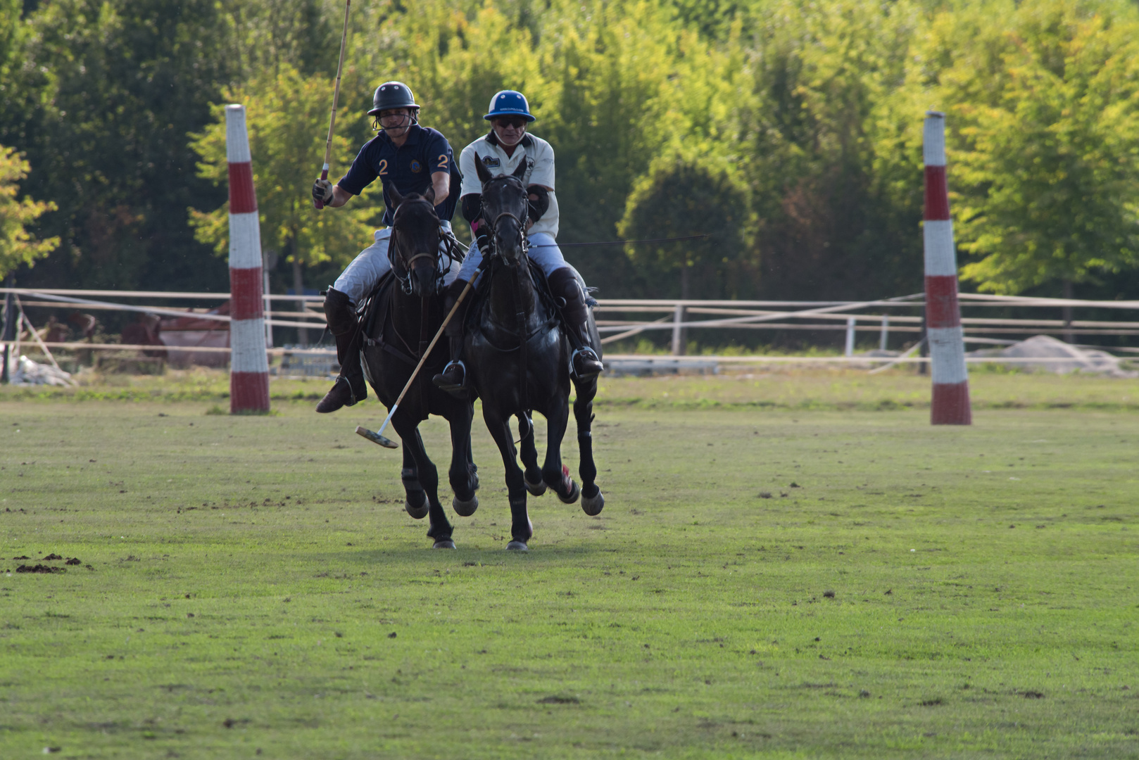 Polo Emotions Cup Stuttgart No.6