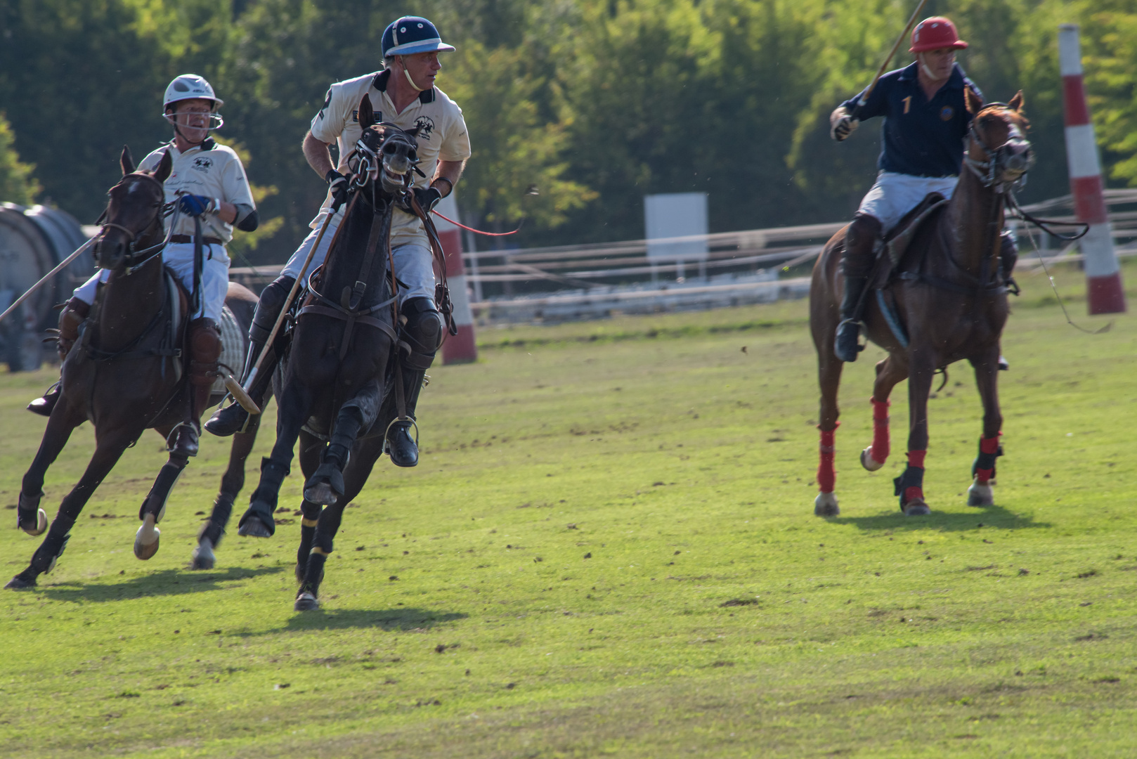 Polo Emotions Cup Stuttgart No.7
