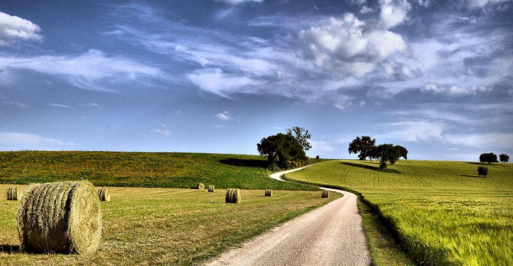 Pomeriggio in campagna foto immagini paesaggi natura for Disegni di cabina di campagna