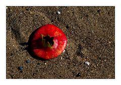 pomme de granat