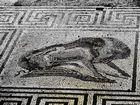 Pompeya - Mosaico
