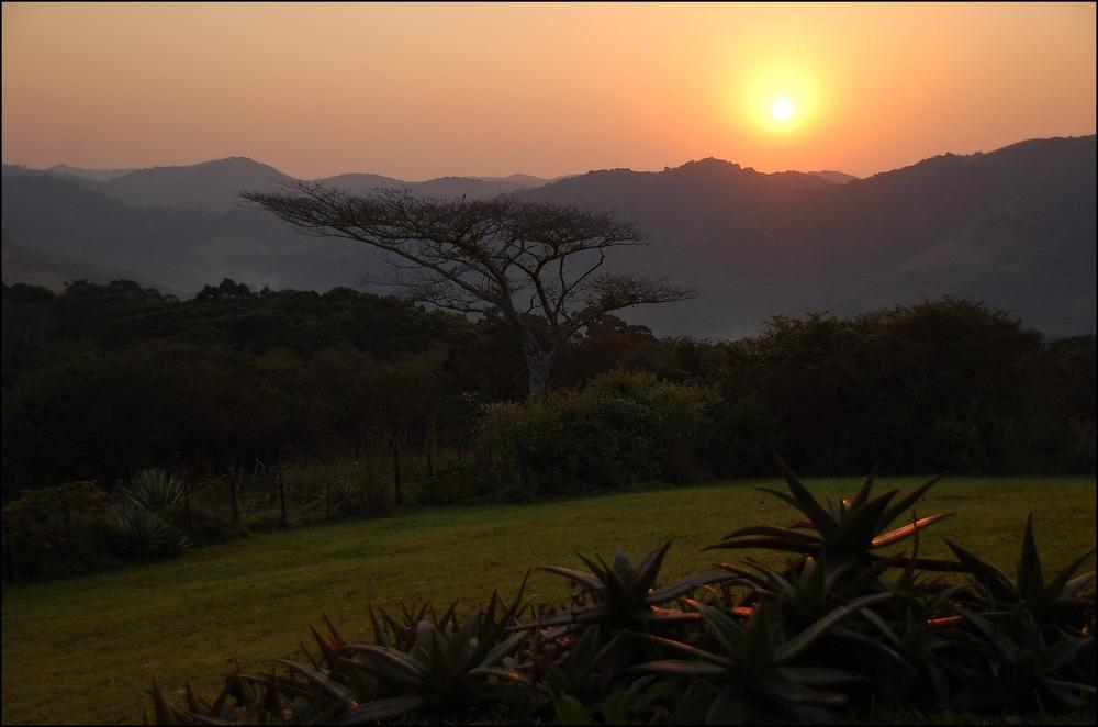 Pondo sunrise