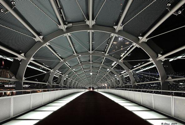 Pont à la maison de climat  ( Brücke zum Klimahaus )