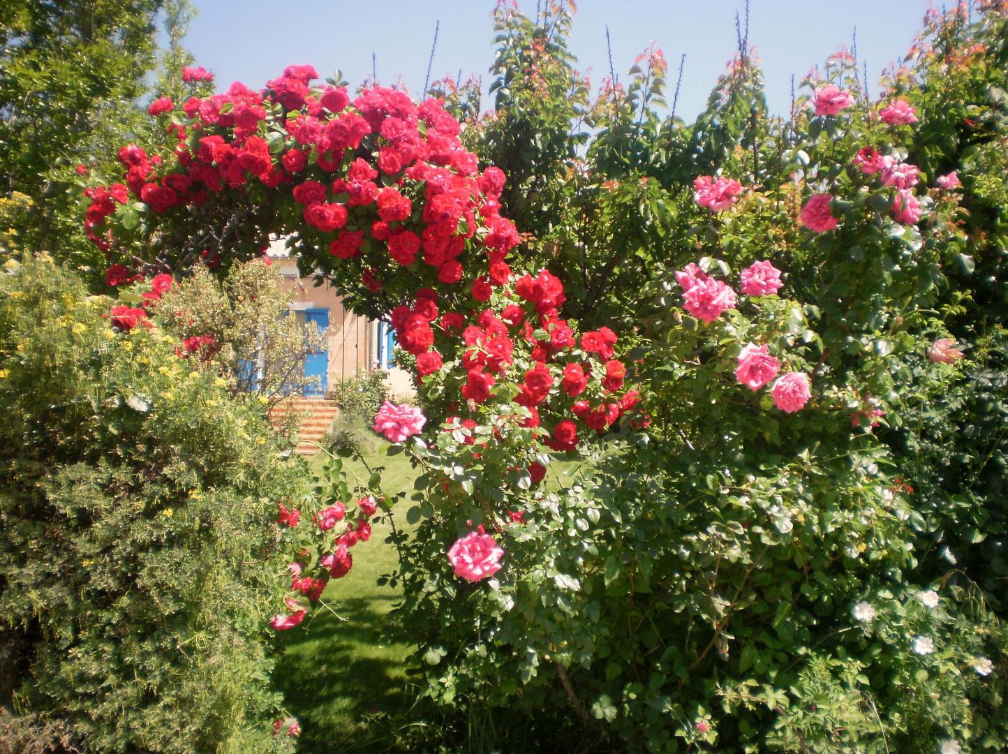 pont de roses...
