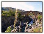 Ponte dei saraceni ( Sicilia )