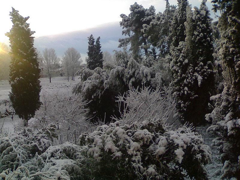 Pontedera con la neve