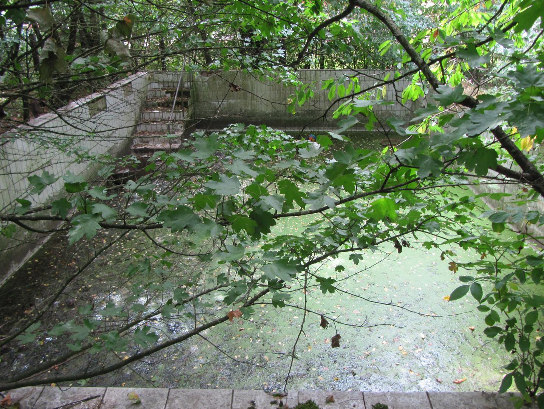 Pool am Wald