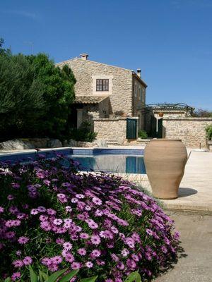 Pool + Blumen