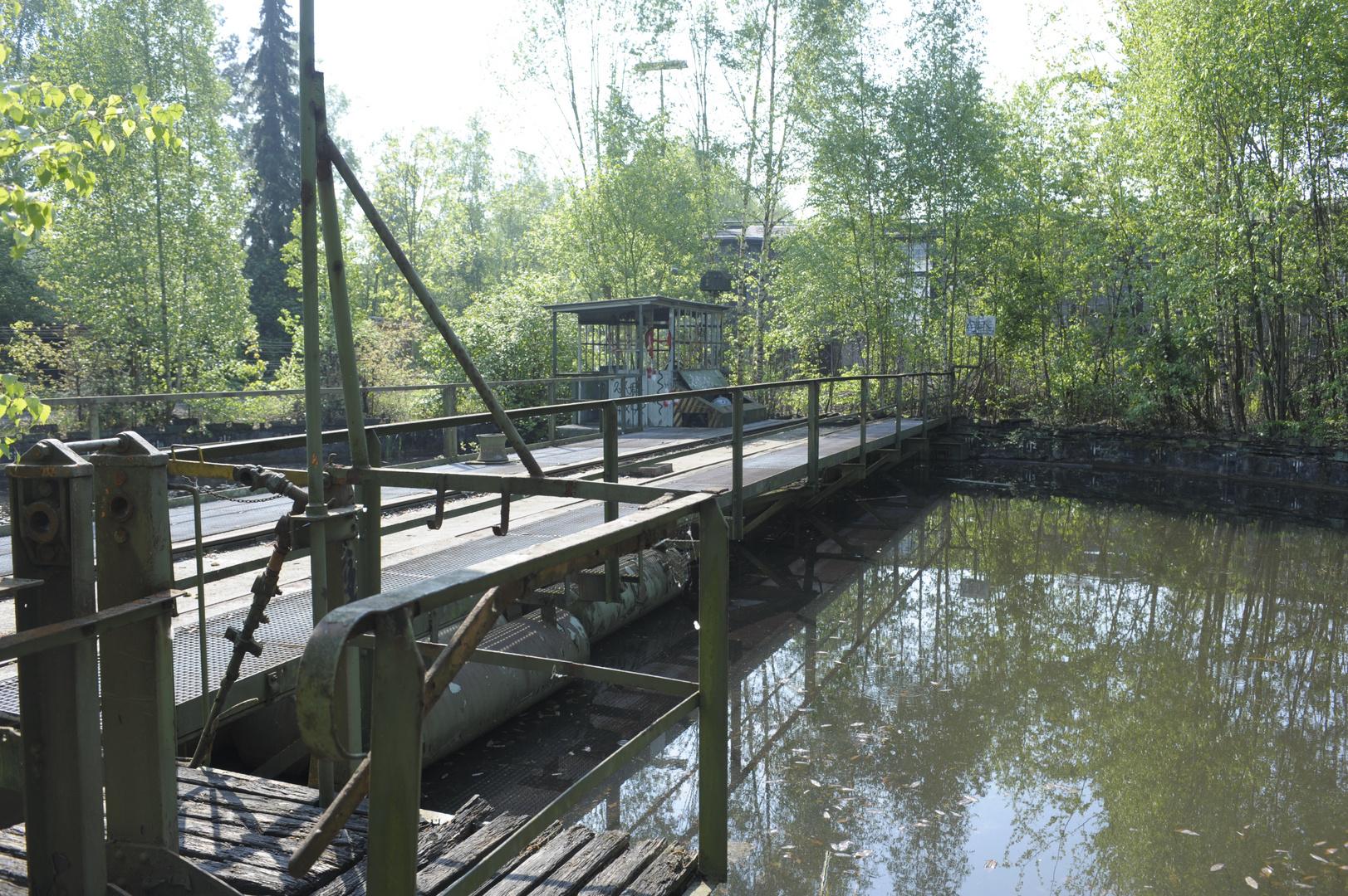 Pool im Wald