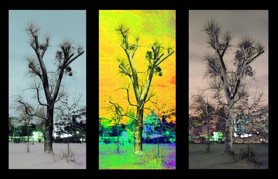 Poptychon