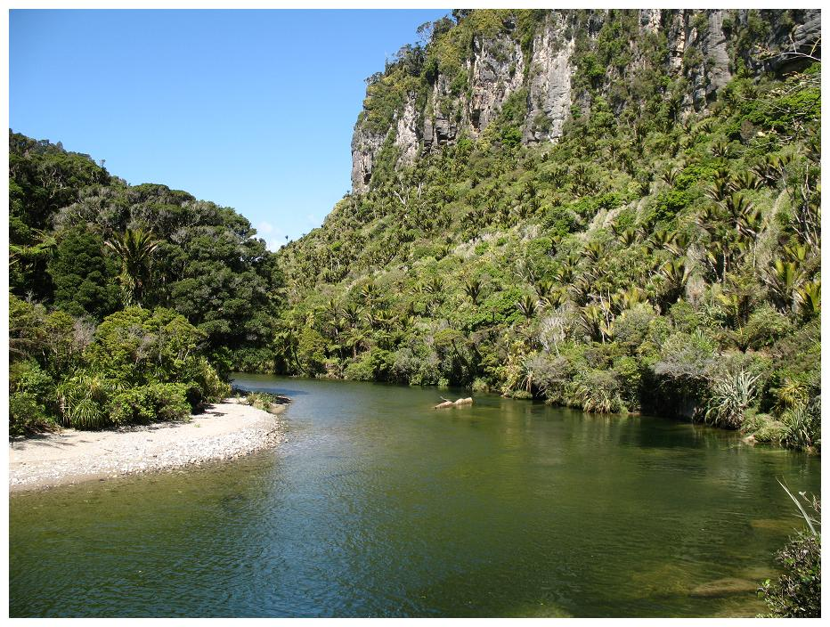 Pororari River (Paparoa National Park)