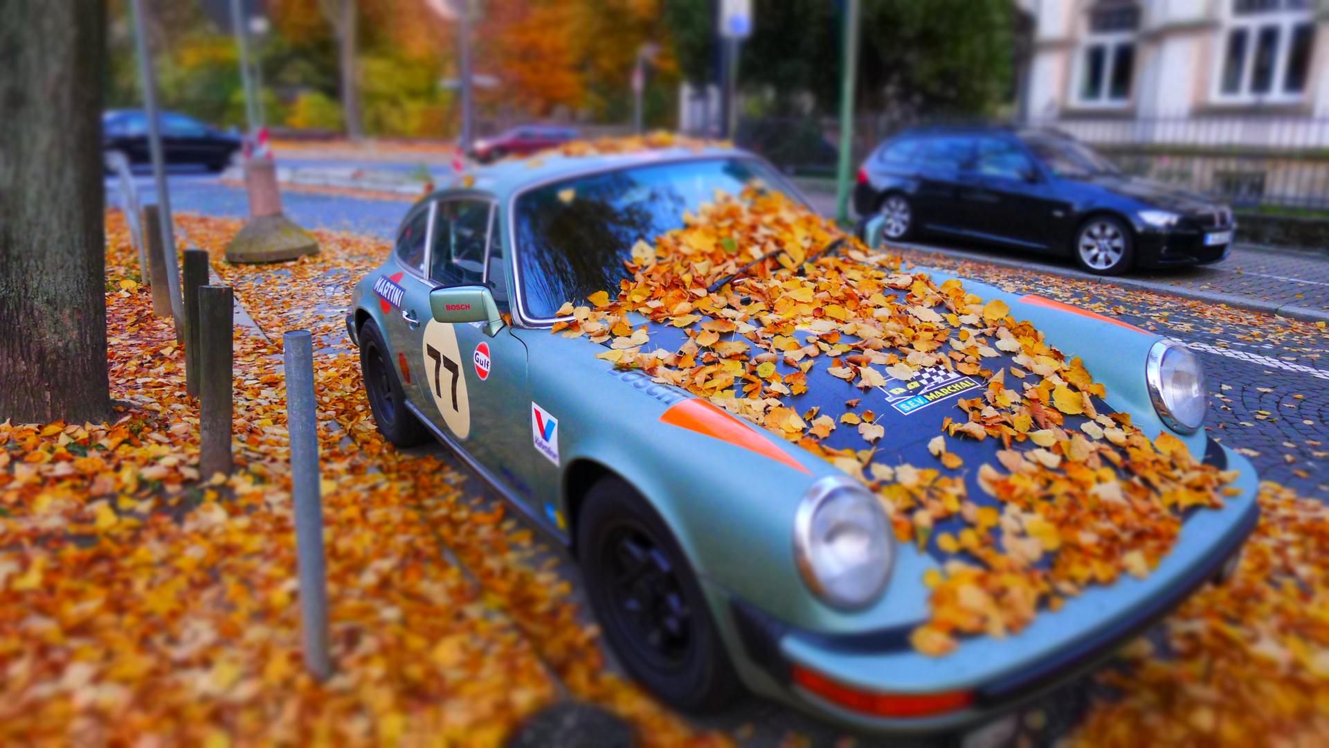 Porsche unterm Laub
