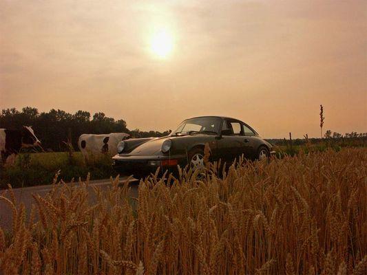 Porsche VI