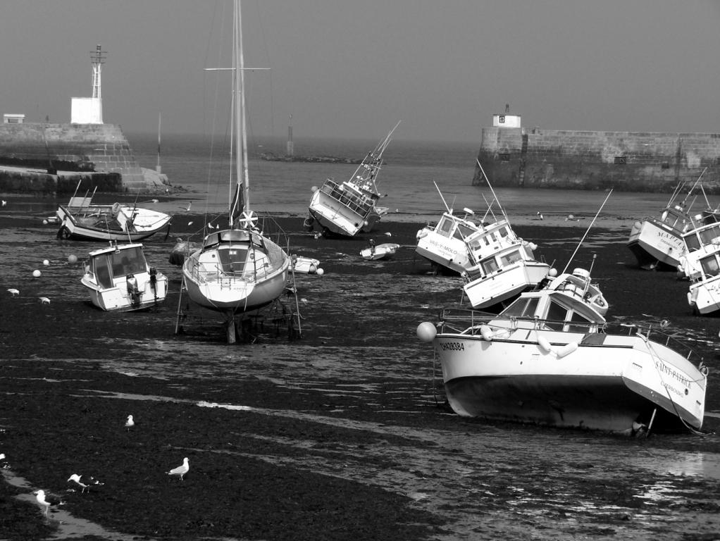 Port de Barfleur marée basse