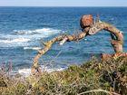 Port de 'es Canonge - Blick auf´s Meer